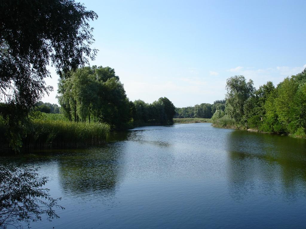 Картинки по запросу річка Вільшанка